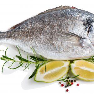 Garnelen / Fisch